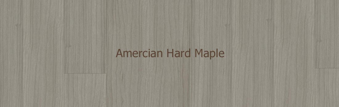 Amercian Hard Maple solid wood floor
