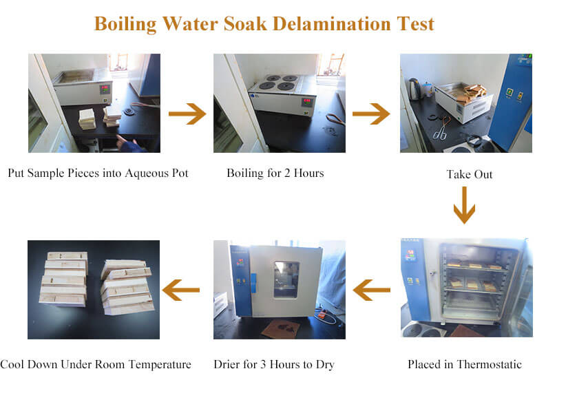 Boiling water soak delamination test