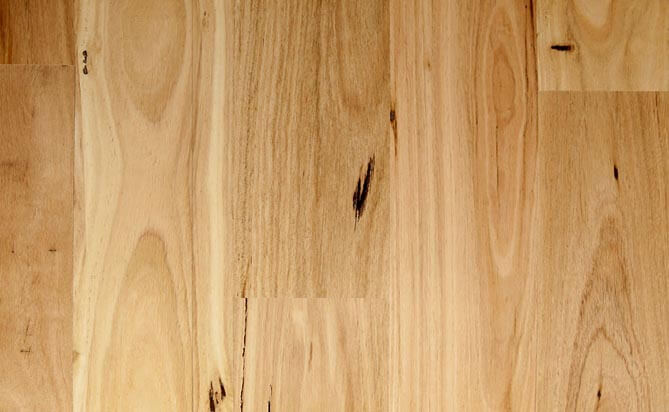 Engineered Australian Timbers Flooring Blackbutt