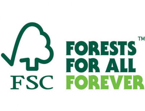 What Is FSC Certification? Why Are You Looking For It